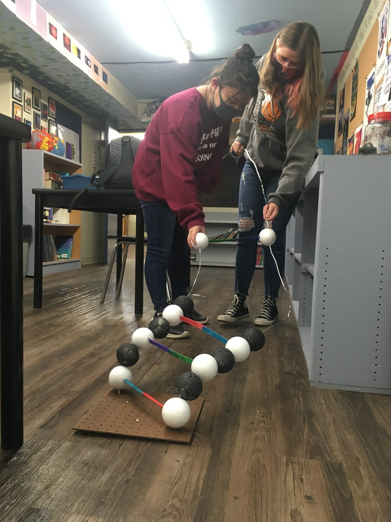 Biology Students building a giant DNA model